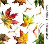 seamless pattern with  autumn...   Shutterstock . vector #540096991