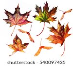 leaves isolated set  hand drawn ... | Shutterstock . vector #540097435