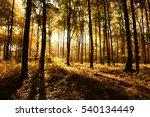 autumn morning | Shutterstock . vector #540134449