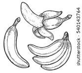 banana fruit  bunch. organic...   Shutterstock .eps vector #540143764