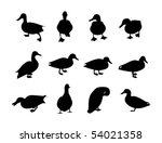 Collection Of Vector Duck...