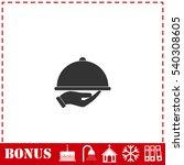 restaurant cloche in hand icon...   Shutterstock .eps vector #540308605
