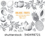 fruits top view frame. farmers... | Shutterstock .eps vector #540498721