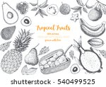 tropical fruits top view frame. ... | Shutterstock .eps vector #540499525