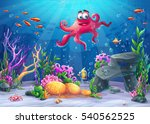 Beautiful Octopus  Coral And...