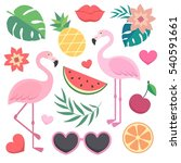 vector set of tropical... | Shutterstock .eps vector #540591661