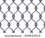 rope seamless tied fishnet... | Shutterstock .eps vector #540923515