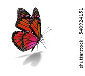 beautiful red monarch butterfly ... | Shutterstock . vector #540924151