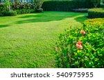 landscaped formal  front yard... | Shutterstock . vector #540975955