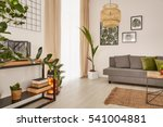 cozy home with decorative green ... | Shutterstock . vector #541004881
