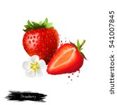 strawberry fruit and flower... | Shutterstock . vector #541007845