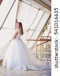 beautiful bride portrait... | Shutterstock . vector #541016635