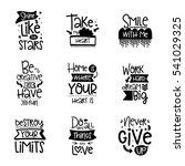 vector calligraphy with decor... | Shutterstock .eps vector #541029325