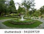 a garden of flowers in the... | Shutterstock . vector #541039729