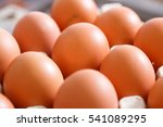 Small photo of Raw and fresh, labeled organic chicken eggs packed in neat egg holders, ready to be transported and sold to consumers. Agribusiness, food production, organic farming concept.