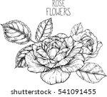 rose flowers drawing vector... | Shutterstock .eps vector #541091455