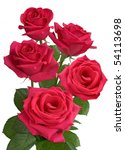 Stock photo red roses on a white background 54113698