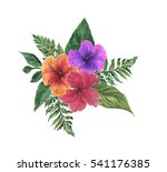 watercolor floral compositon... | Shutterstock . vector #541176385