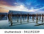 solar energy | Shutterstock . vector #541192339