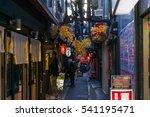 tokyo  japan   december 17 2016 ...   Shutterstock . vector #541195471