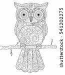 owl on a branch coloring book... | Shutterstock .eps vector #541202275