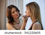 makeup artist applies makeup... | Shutterstock . vector #541220605