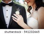 bride and groom | Shutterstock . vector #541232665