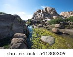 Desert Water Oasis In The...