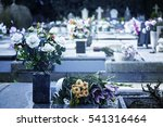 flowers in the cemetery | Shutterstock . vector #541316464