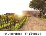 napa valley california vineyard ... | Shutterstock . vector #541348819