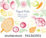 tropical fruits top view frame... | Shutterstock .eps vector #541363501