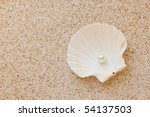 Sea Shell With Great White...