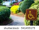 handicap sign at a park | Shutterstock . vector #541455175