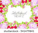 vintage delicate invitation... | Shutterstock . vector #541479841