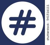 hashtags icon vector flat... | Shutterstock .eps vector #541516111