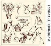 gardening instruments sketch... | Shutterstock . vector #541648375
