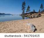 scenic view of beautiful lake... | Shutterstock . vector #541701415