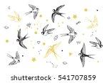 swallow in sky vector set | Shutterstock .eps vector #541707859