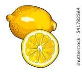 oranges  sketch style vector... | Shutterstock .eps vector #541782364