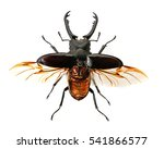 stag beetle isolated on white... | Shutterstock . vector #541866577
