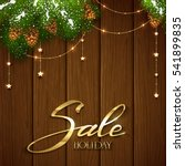 lettering holiday sale on brown ...   Shutterstock . vector #541899835