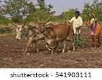Mandu  Madhya Pradesh  India  ...