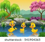 Cute Ducks Swimming On The Pond