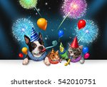 Stock photo new year pet celebration as a night party with fireworks partying as a group of animals as a happy 542010751