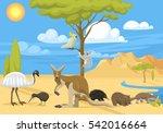Australia Wild Life Animals...