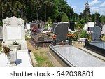 tombstones in the public... | Shutterstock . vector #542038801