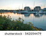 yachts in a city bay  thunder... | Shutterstock . vector #542054479