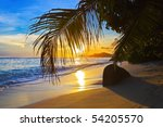 Stock photo tropical beach at sunset nature background 54205570