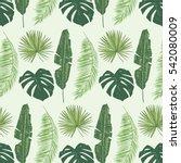 palm tree leaves pattern | Shutterstock .eps vector #542080009