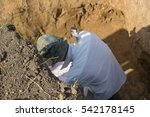 Young Man  Archaeologist ...